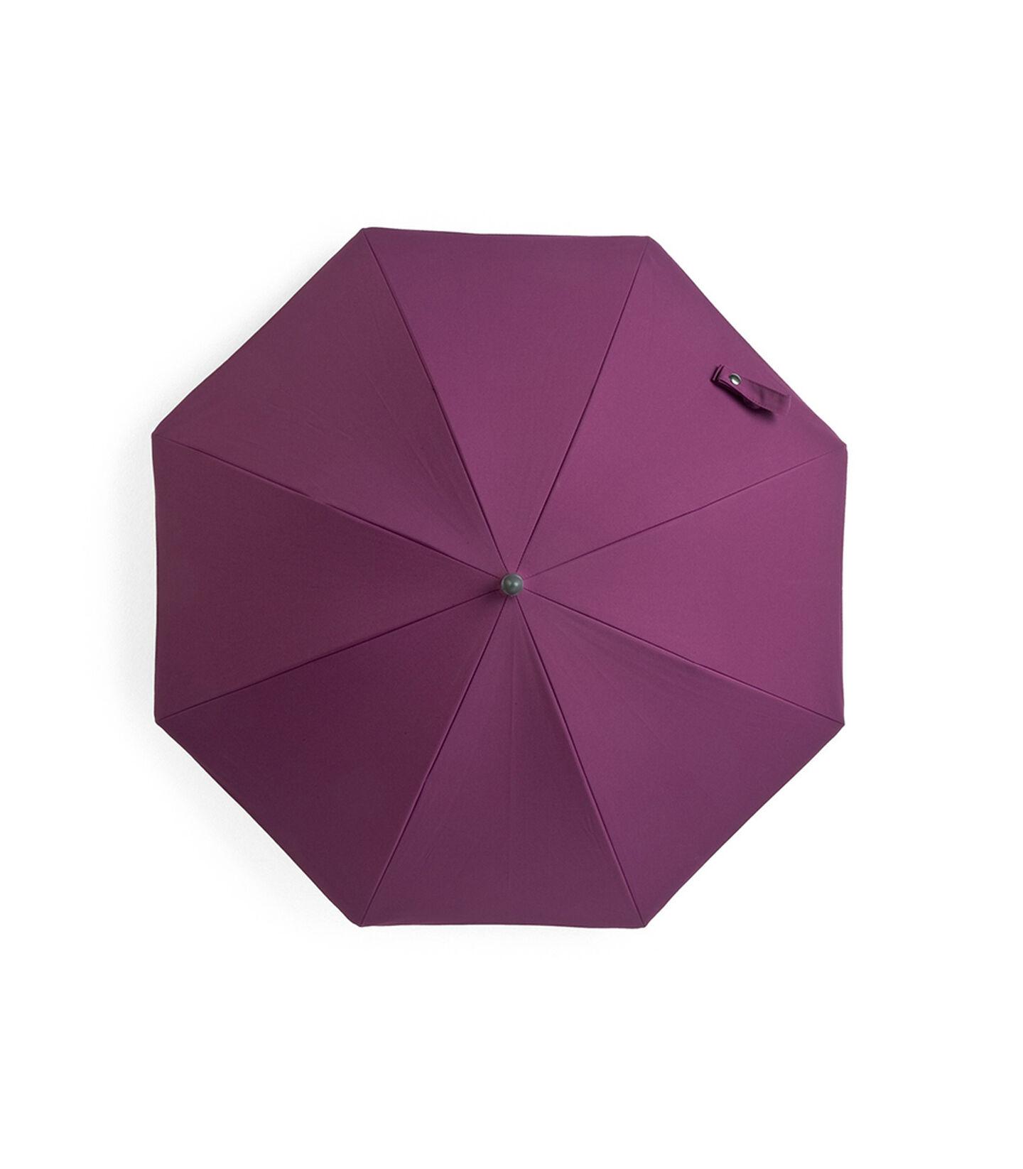 Parasol, Purple.