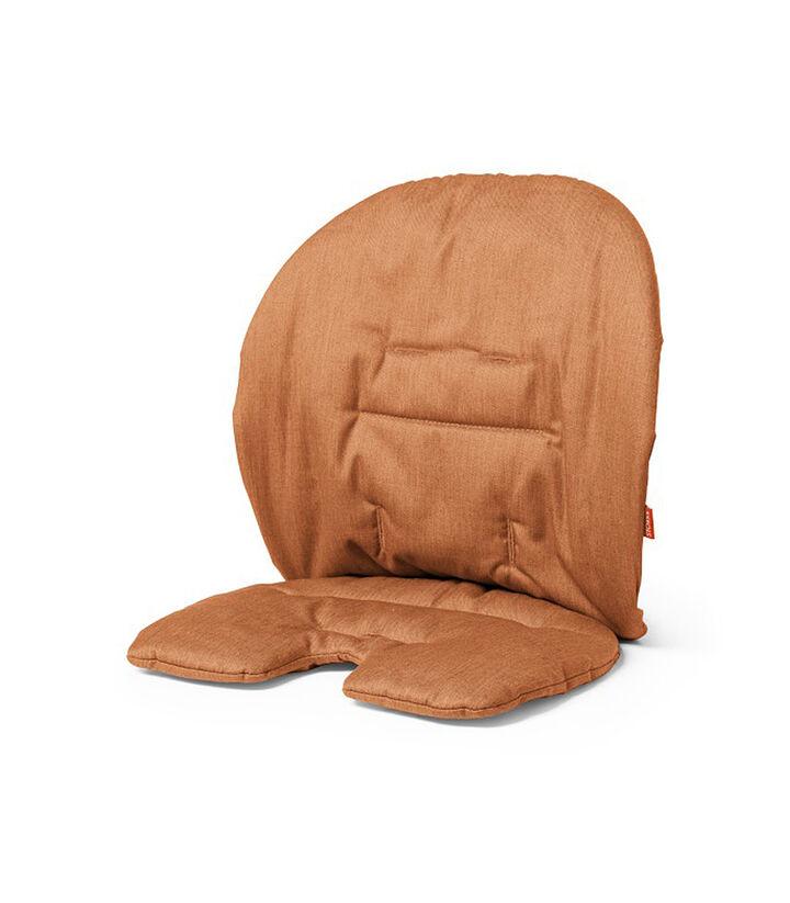 Accessories. Cushion  Orange.