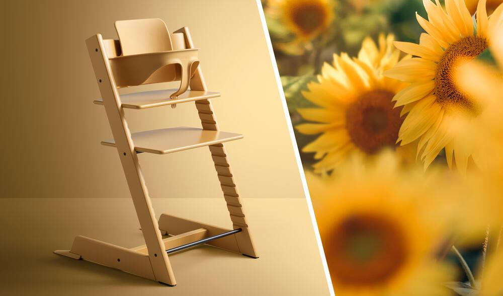 sunflower color tt chair and sunflower