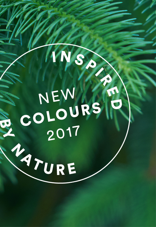 IMG_tripp-trapp-colours-2017_forestgreen2