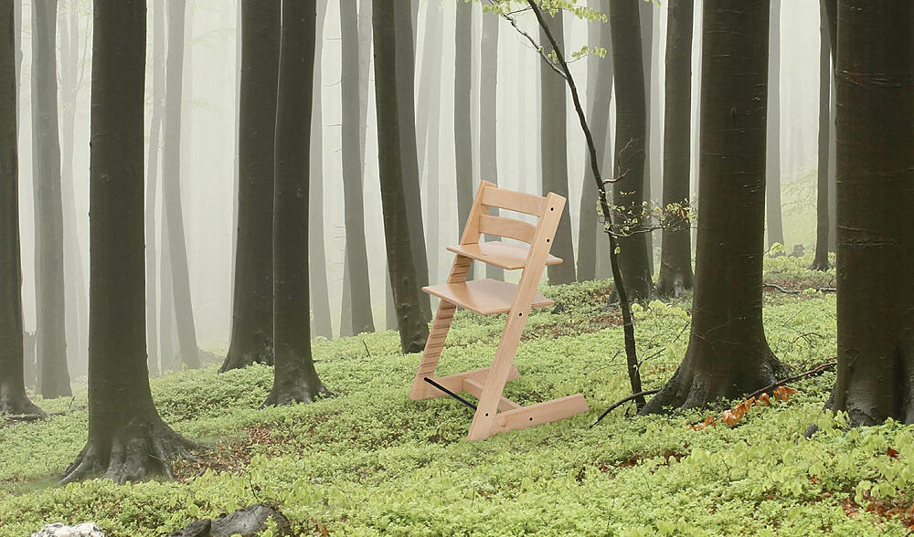 TT chair in green forest